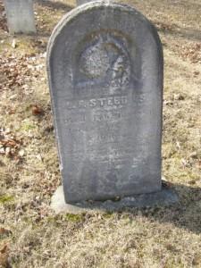 Stebbins LF Row 18
